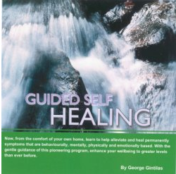 Guided Self Healing